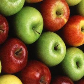 Program zaštite jabuke